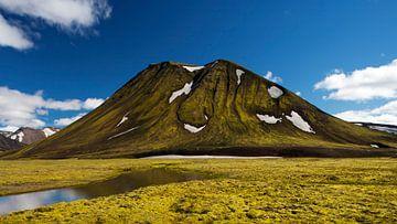 Snaefellsnes in IJsland van Dieter Meyrl