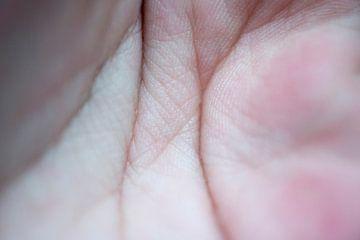 Linien in der Hand von Tessa Wassenberg