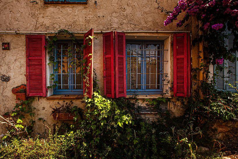 Windows of Flowers van Christiaan Sauer