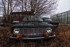 Volvo von romario rondelez