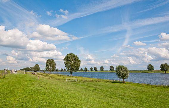 Uitzicht over het landschap bij de Bergsche Maas