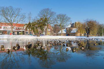 Vijver park Meezenbroek in de winter van Francois Debets