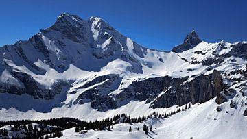 Ortstock (2717m) Und Höchturm (2666m) Glarus, Schweiz von Daphne Photography