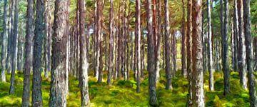 Résumé du romantisme de la forêt sur Marion Tenbergen