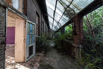 Haus gegen Natur van Matthis Rumhipstern