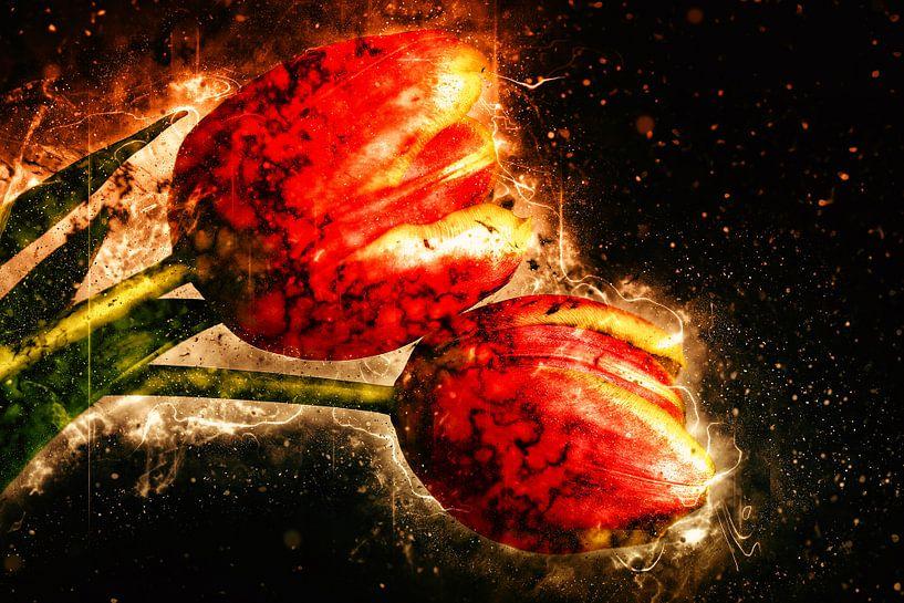 two tulips von Dagmar Marina