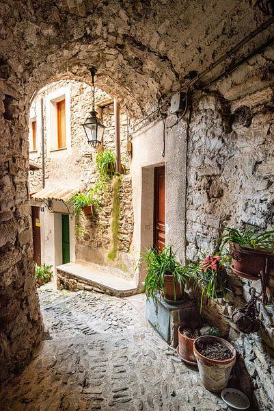 Authentiek steegje in Isolabona, Italië van Ellis Peeters