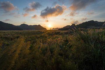 Goldener Sonnenuntergang in der Insel Cát Bà - Ha Long Bay, Vietnam von Thijs van den Broek