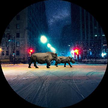Lost in New York van Felix Neubauer