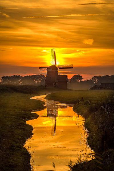 Stream to the sunset van Costas Ganasos