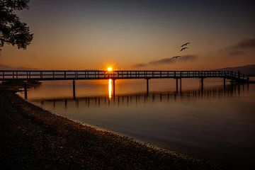 Lever du soleil sur le lac de Constance