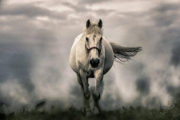 Paard in een Storm van Art By Dominic