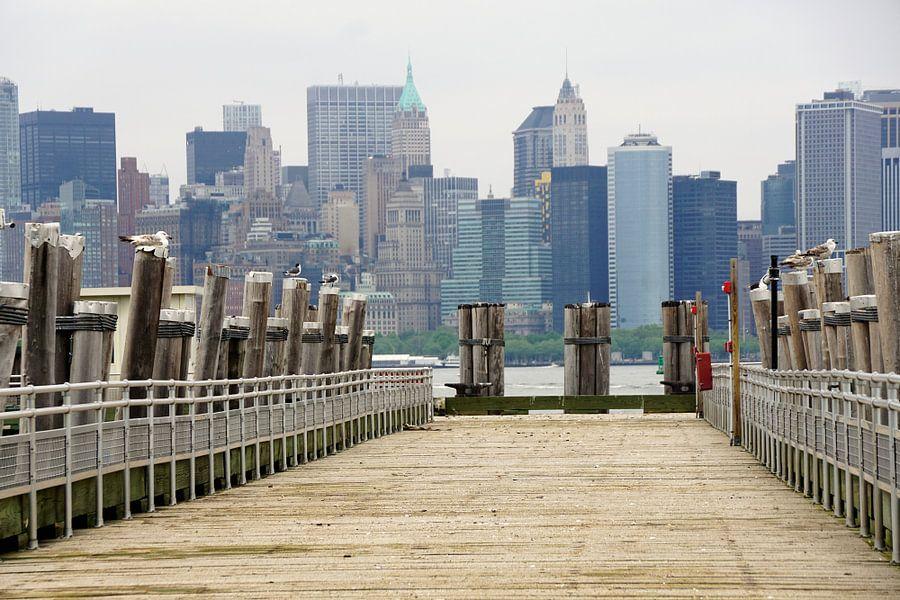 new york van Michel van Vliet