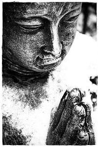 Buddha Wandbilder Vorschau