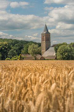 Graanveld bij Stefanuskerk in Zoelen van Moetwil en van Dijk - Fotografie