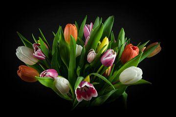 Stillleben Tulpen: Strauß farbiger Tulpen von Marjolein van Middelkoop