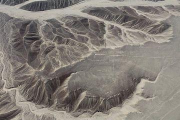 Nazca lijnen Peru van Martin van den Berg Mandy Steehouwer