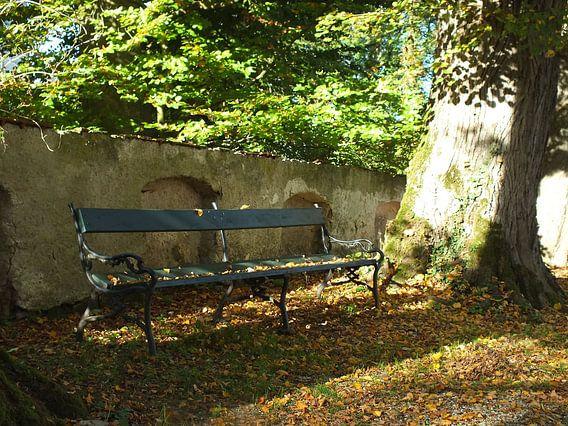 Schlosspark von Ilona Picha-Höberth