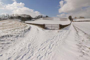 Winters panorama op de heuvels bij de Apostelhoeve vanaf Hoeve Nekum van Ton Reijnaerdts