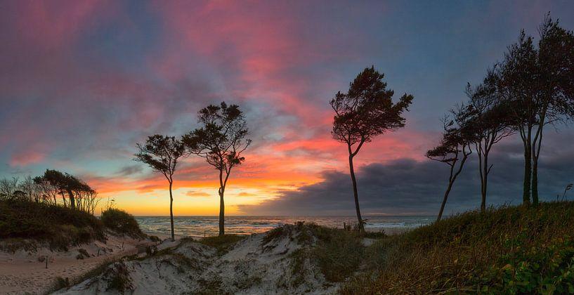 West Beach Romantiek van Daniela Beyer