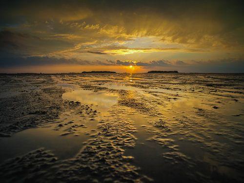 Golden sunset van Lex Schulte