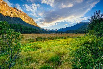 Eglinton Valley, op weg naar Milford Sound, Nieuw Zeeland van Rietje Bulthuis