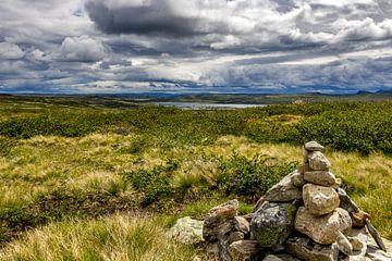 Hoogvlakte in Noorwegen ( Hardangervidda ) van Wouter van Agtmaal