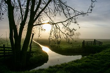 Niederländischer Polder bei Sonnenuntergang von Arthur Puls Photography