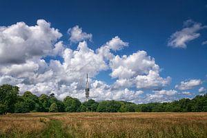 Hilversum, heksenweitje en televisie toren