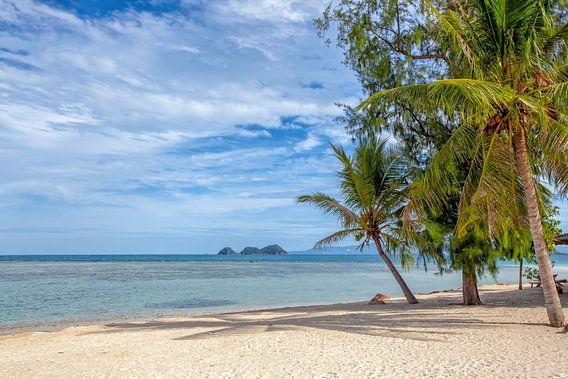 Een mooi tropisch eiland in Thailand. Een panoramisch strand.