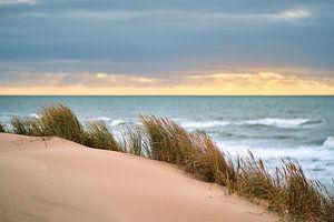 Dünen an der Dänischen Küste von Florian Kunde