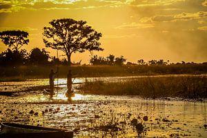 Schitterende zonsondergang en traditionele mokoro's in de  Okavango Delta, Botswana