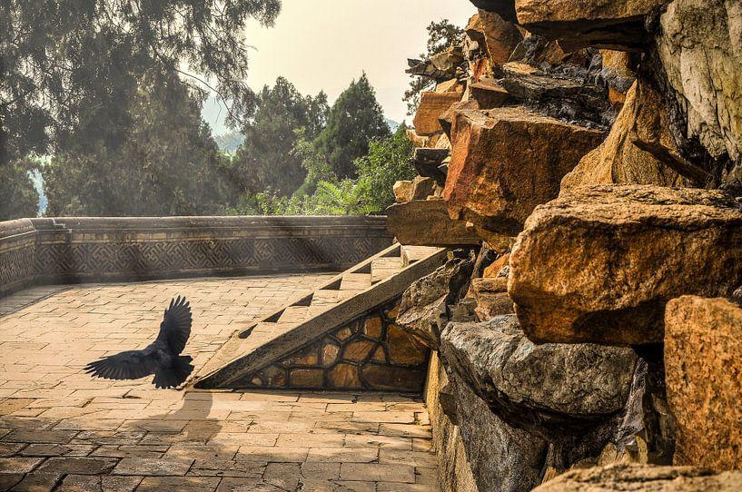 Beijing Tempel van Dennis Timmer