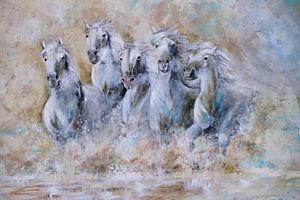 white horses running through  the water...