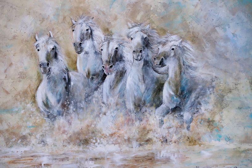 white horses running through  the water...  van Els Fonteine