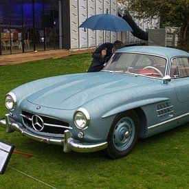 Mercedes van Freddie de Roeck
