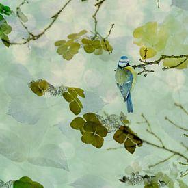 Blaumeise in einer blumigen Umgebung von Anouschka Hendriks