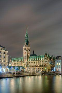 Hôtel de ville de Hambourg sur Michael Valjak