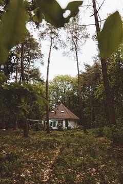 Vakantiehuisje in Norg van Rob Veldman