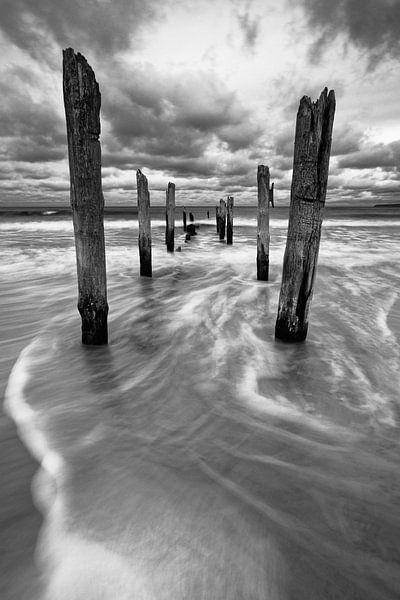 Houten palen op het strand van Ralf Lehmann