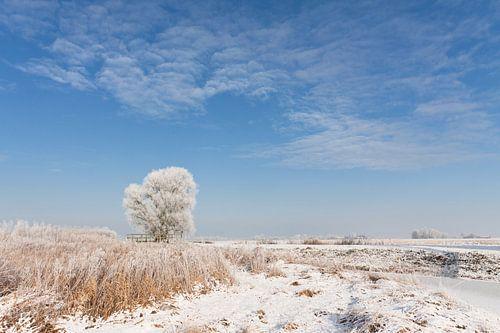 Winter Landschap van Frenk Volt