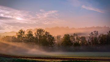 Brume matinale sur Thomas Heitz