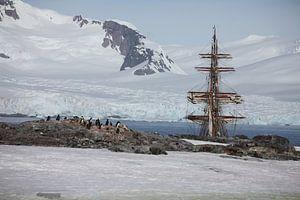 Antarctica Petermans Island