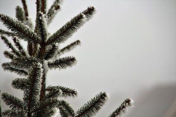 Weiße Weihnachten von Marije Zwart