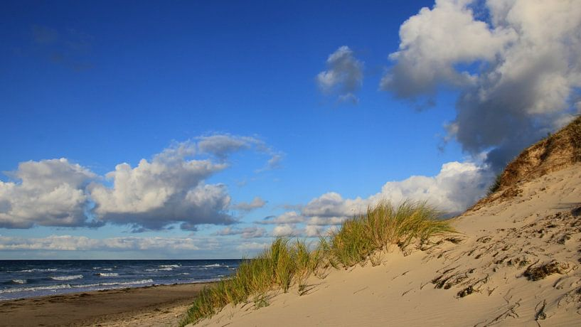 Oktoberdünen van Ostsee Bilder