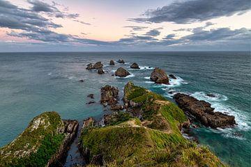 Nugget Point in Nieuw Zeeland van Michael Bollen