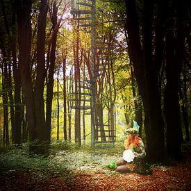 Sprookjesbos van Aafke's fotografie