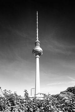 BERLIN Fernsehturm | Monochrom von Melanie Viola