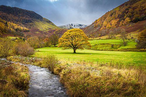 Herfst in het Lake district, Groot Brittannië