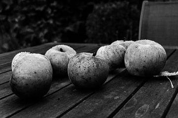 Äpfel in der Kälte von Eline Willekens